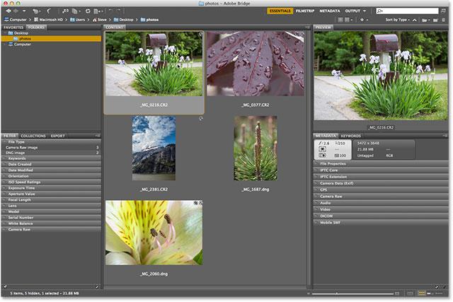 Выбор фотографии для открытия в Camera Raw с помощью Adobe Bridge CS6.  Изображение © 2013 Photoshop Essentials.com