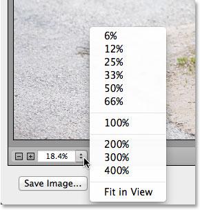 Параметры масштабирования, включая предустановки масштабирования, в левом нижнем углу диалогового окна Camera Raw.  Изображение © 2013 Photoshop Essentials.com