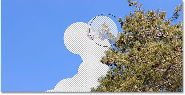 Пример Фонового Ластика в Фотошопе.  Изображение © 2010 Photoshop Essentials.com