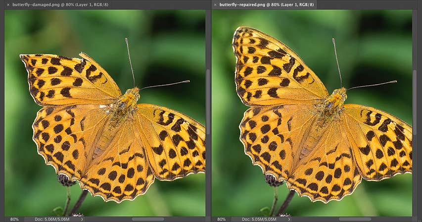 Как использовать Content-Aware Fill в Photoshop CC 2019 для удаления объектов из изображений