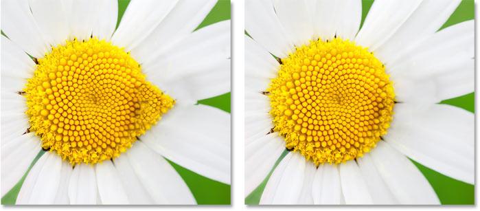 Сравнение результатов Адаптации вращения в пространстве задач Content-Aware Fill в Photoshop CC 2019