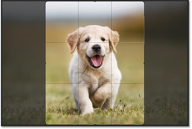 Обрезка изображения до нового соотношения сторон в Photoshop