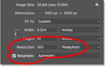 Ресэмплинг изображения до 300 пикселей / дюйм в фотошопе