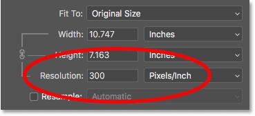 Текущее разрешение изображения в диалоговом окне «Размер изображения» в Photoshop.