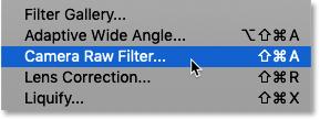 Как выбрать фильтр Camera Raw в Photoshop