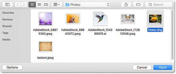 Выбор необработанного файла для открытия в виде смарт-объекта в Photoshop