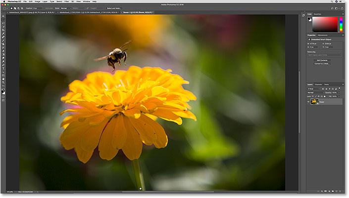 Необработанный файл, открытый в Photoshop как смарт-объект