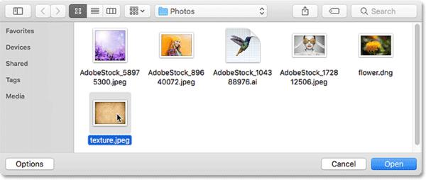 Выбор изображения для размещения в документе в Photoshop