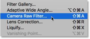 Открытие Camera Raw Filter в Photoshop CC