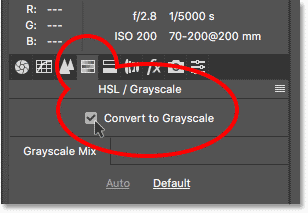 Как преобразовать цветные изображения в оттенки серого в Camera Raw Filter в Photoshop