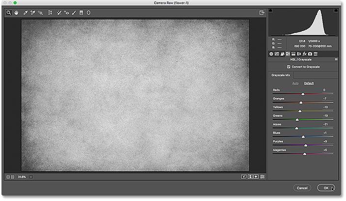 Диалоговое окно Camera Raw Filter, показывающее предварительный просмотр преобразования в градациях серого