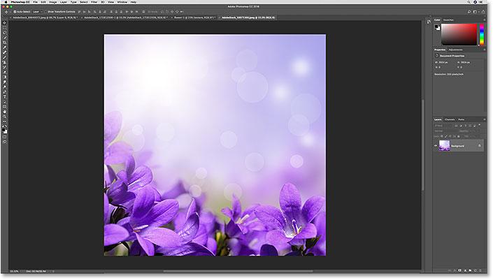 Документ Photoshop, в который будет вставлен файл Illustrator.
