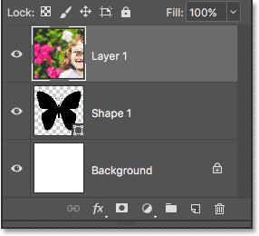 Панель «Слои» показывает изображение над формой.
