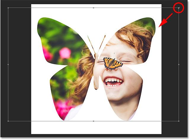Использование Free Transform для перемещения и изменения размера изображения внутри фигуры.