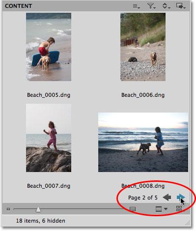 Миниатюры изображений отображаются в виде страниц в Mini Bridge.
