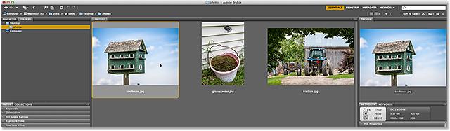 Adobe Bridge CC.  Image © 2013 Стив Паттерсон, Photoshop Essentials.com