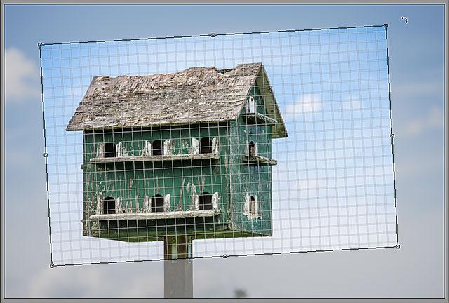 Вращение поля обрезки в Camera Raw.  Image © 2013 Стив Паттерсон, Photoshop Essentials.com