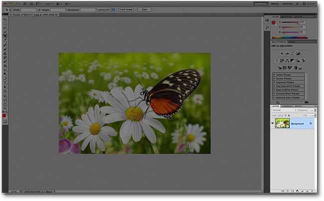 Панель «Слои» в интерфейсе Photoshop CS5.