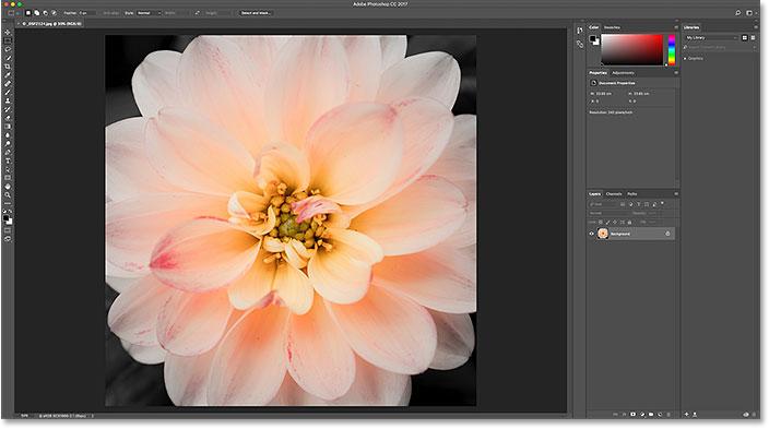 Первое изображение открывается в фотошопе.  Image © 2016 Стив Паттерсон, Photoshop Essentials.com