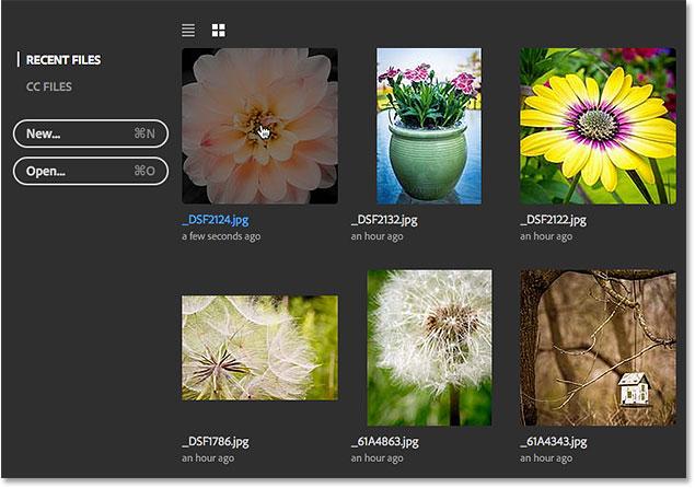 Выбор того же изображения, что и в прошлый раз.  Image © 2016 Стив Паттерсон, Photoshop Essentials.com