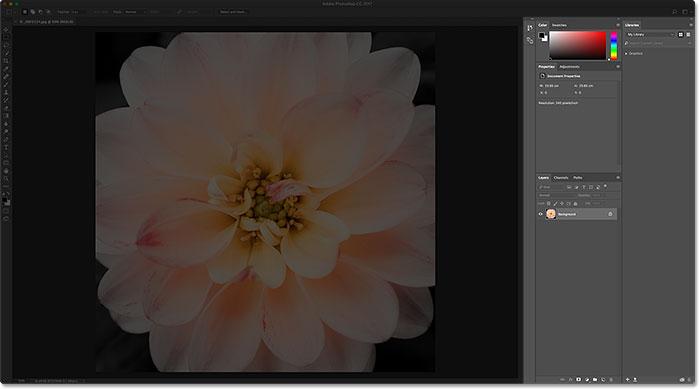 Панели справа от интерфейса Photoshop.  Image © 2016 Стив Паттерсон, Photoshop Essentials.com