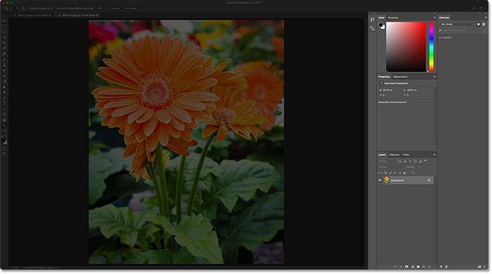 Панель «Последние файлы» закрывается при открытии выбранного изображения.  Image © 2016 Стив Паттерсон, Photoshop Essentials.com