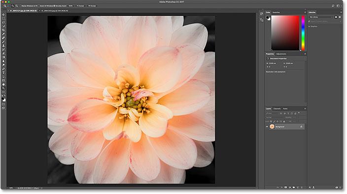 Вернуться к просмотру исходного изображения.  Image © 2016 Стив Паттерсон, Photoshop Essentials.com