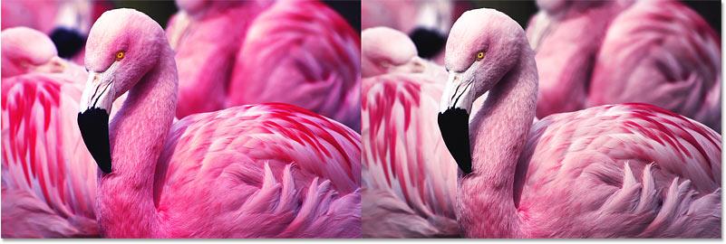 Изображение до и после коррекции цветовой насыщенности