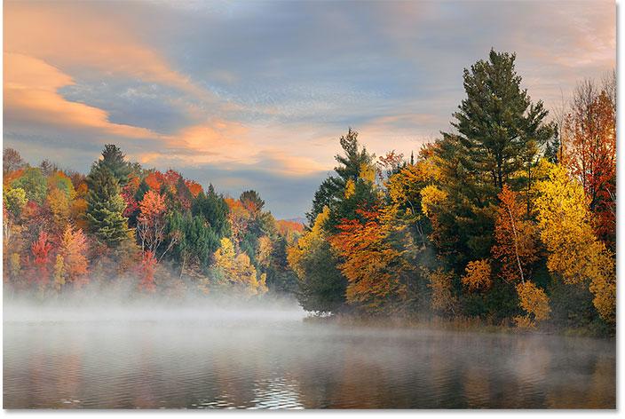Фото осенней листвы от Adobe Stock