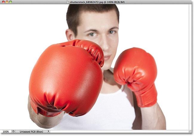 Фотография боксера.  Изображение получено по лицензии от Shutterstock от Photoshop Essentials.com