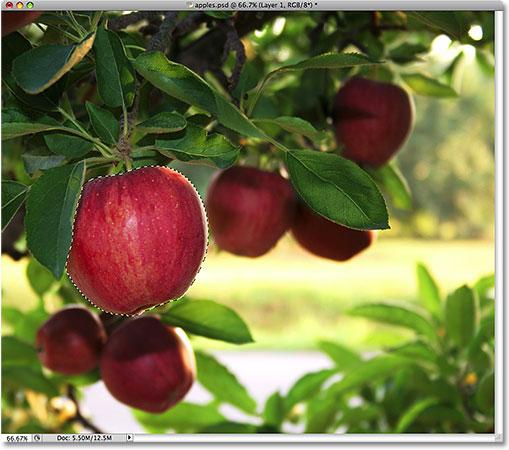Выбор яблока еще раз.